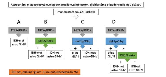 Algoritmus diagnostiky difúznych gliómov (upravené podľa ref. 57).