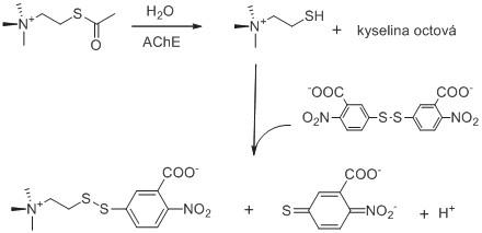 Princip Ellmanovy metody pro stanovení aktivity AChE. Reakční schéma je upraveno z citovaných prací <sup>61, 62)</sup>.
