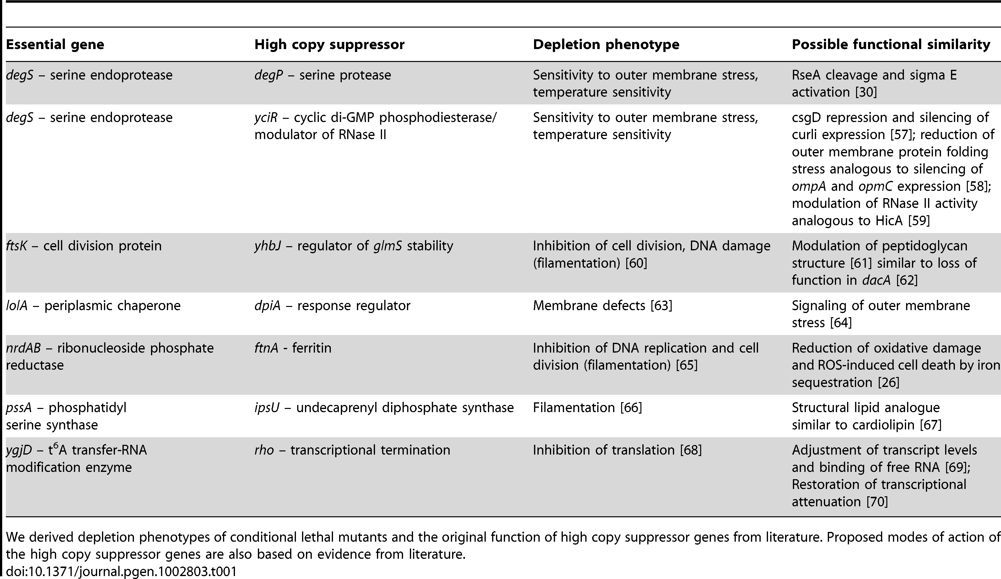 Possible functional similarities between non-complementing high copy suppressors and essential genes.
