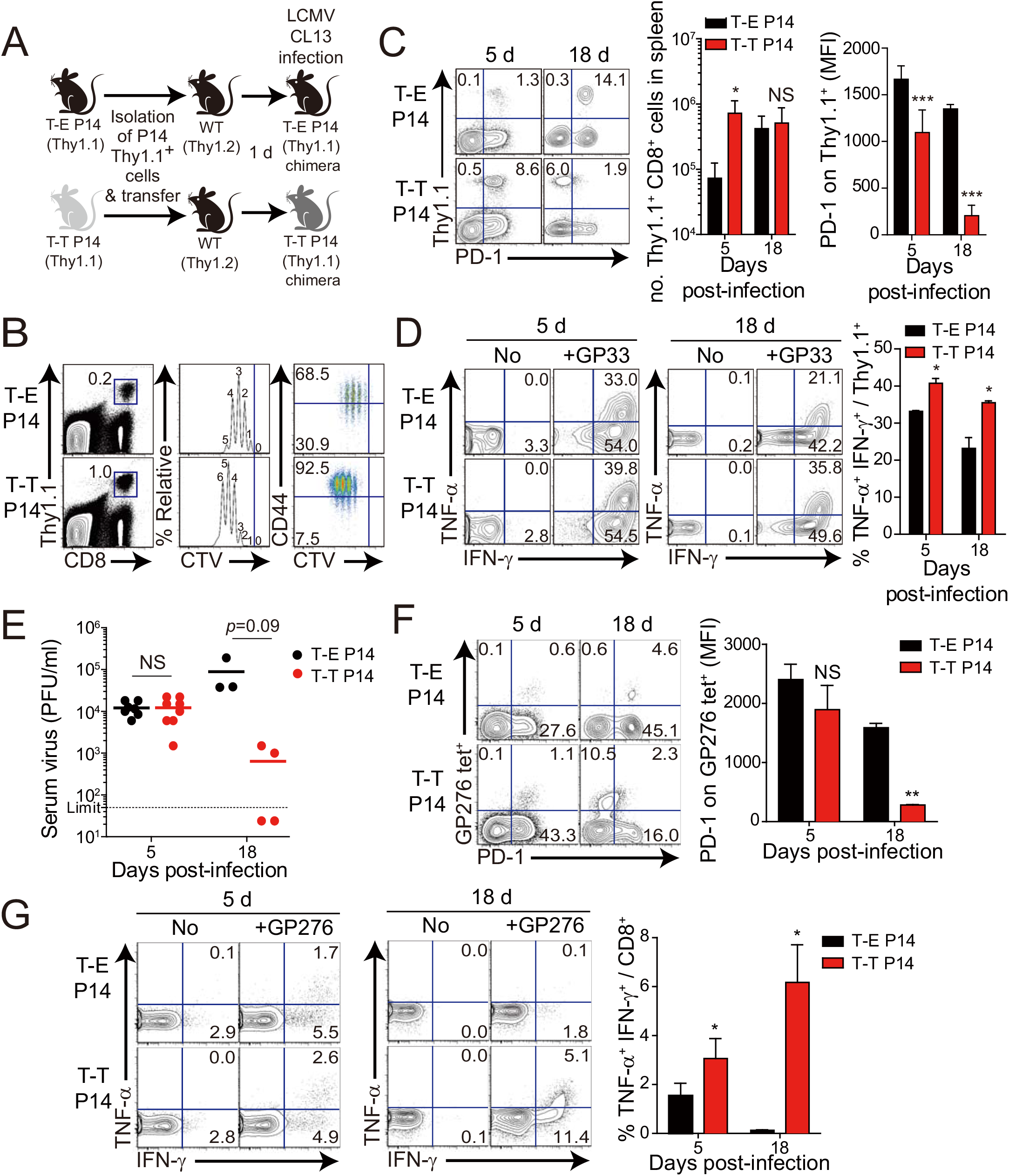 Control of chronic LCMV infection by innate CD8<sup>+</sup> T cells.