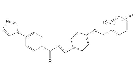 Struktura protituberkulózně účinných aryloxy azolyl chalkonů