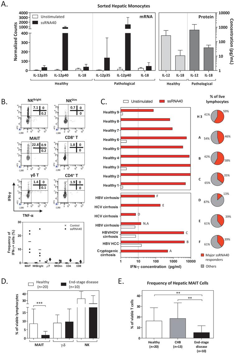 Characterisation of TLR8-mediated immune responses in pathologic intrahepatic immune cells.