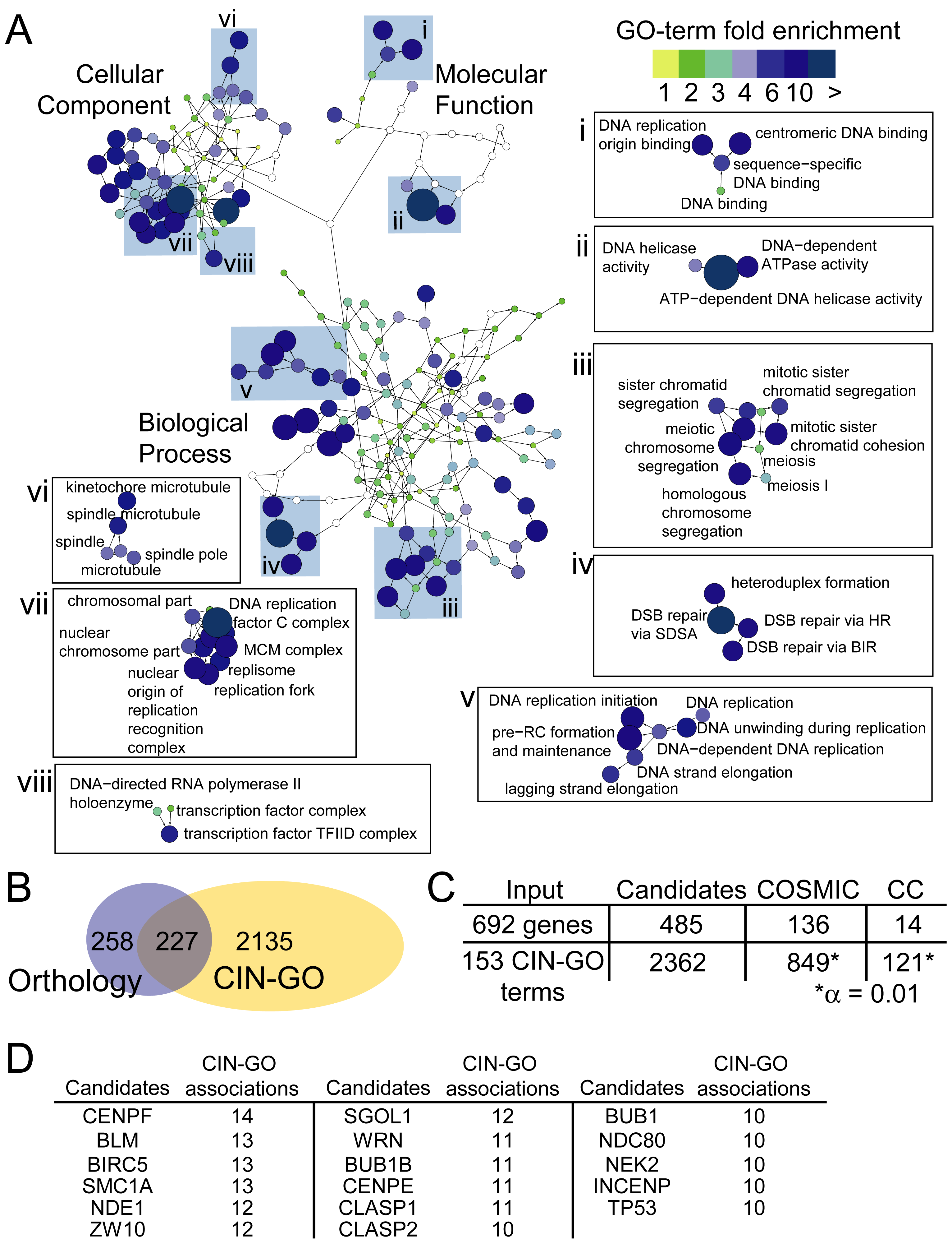 A constellation of GO-terms define CIN pathways and human CIN candidates.