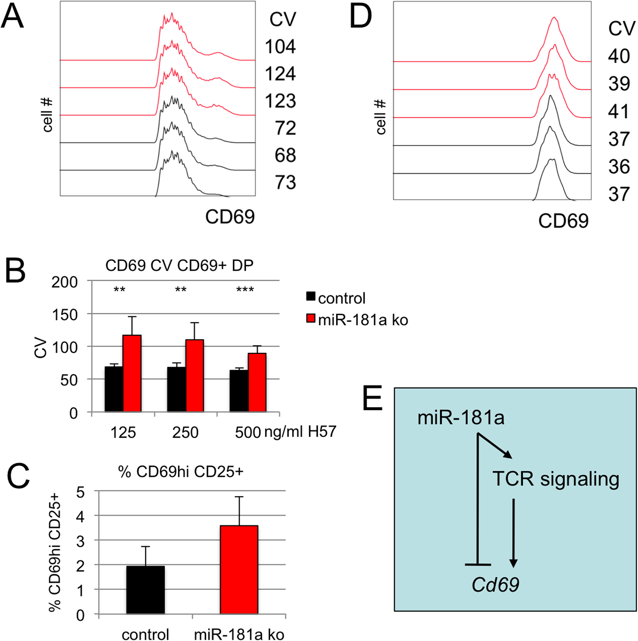 miR-181a controls cell-to-cell variation in CD69 expression.