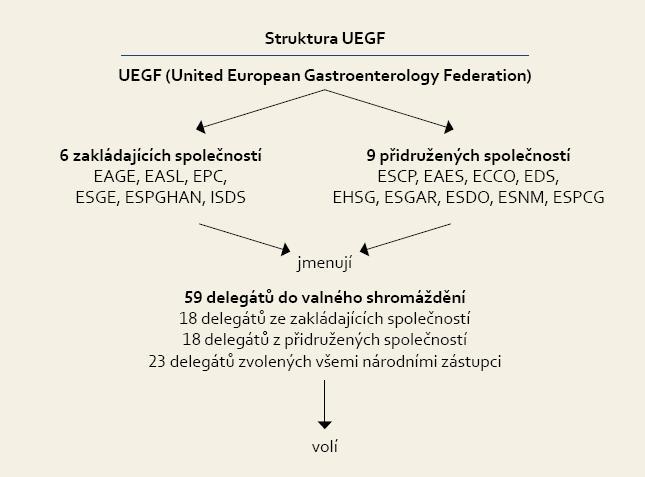 Rada UEGF. Fig. 2. UEGF Council.