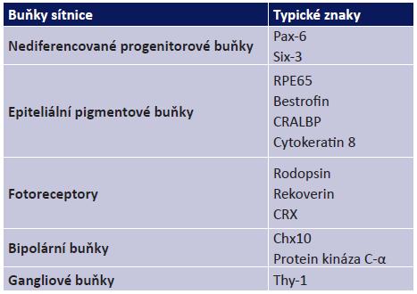 Typické znaky jednotlivých buněk sítnice