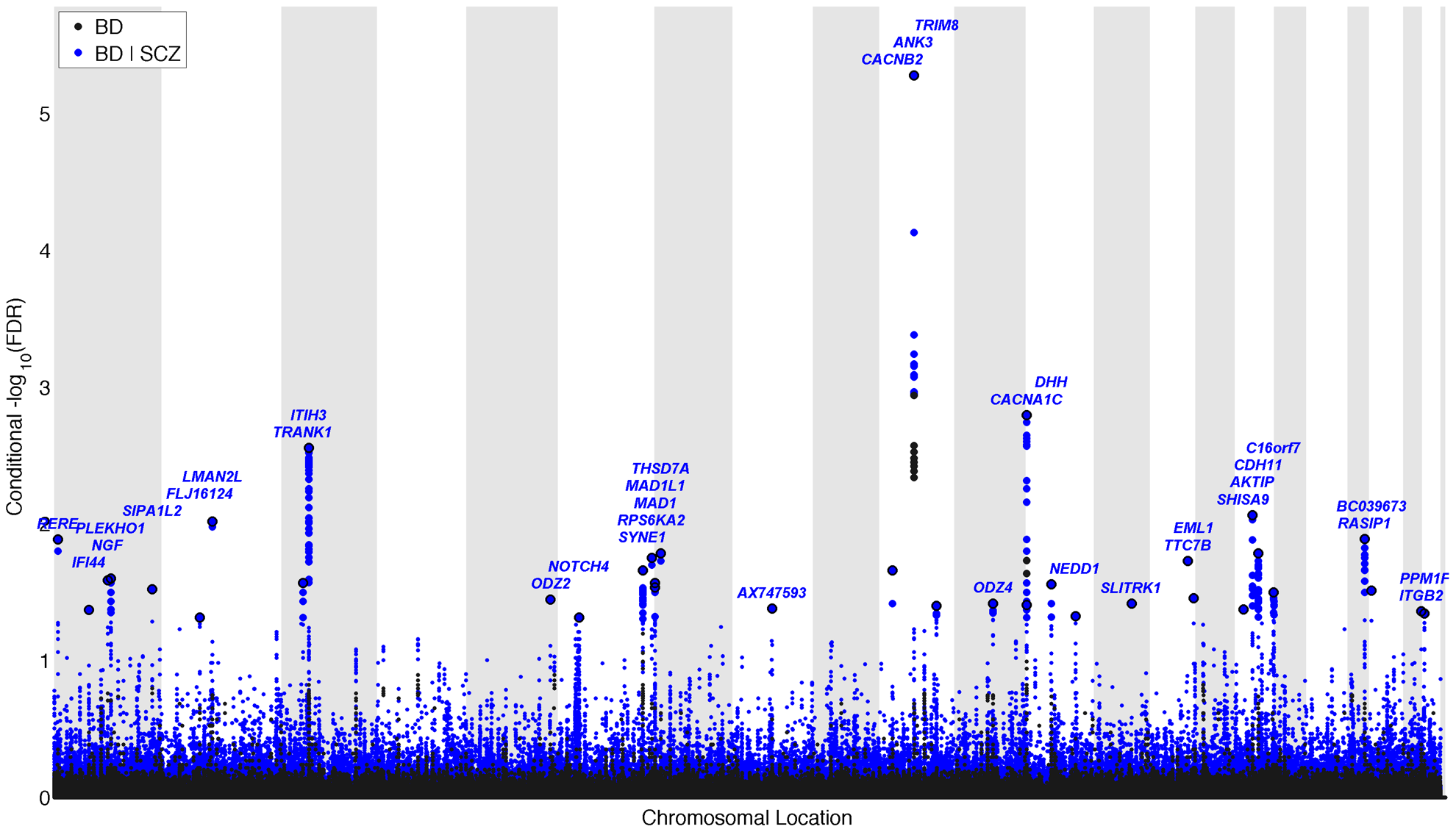 """""""Conditional Manhattan plot"""" of conditional −log<sub>10</sub> (FDR) values for Bipolar disorder (BD) alone (black) and BD given schizophrenia (SCZ; BD