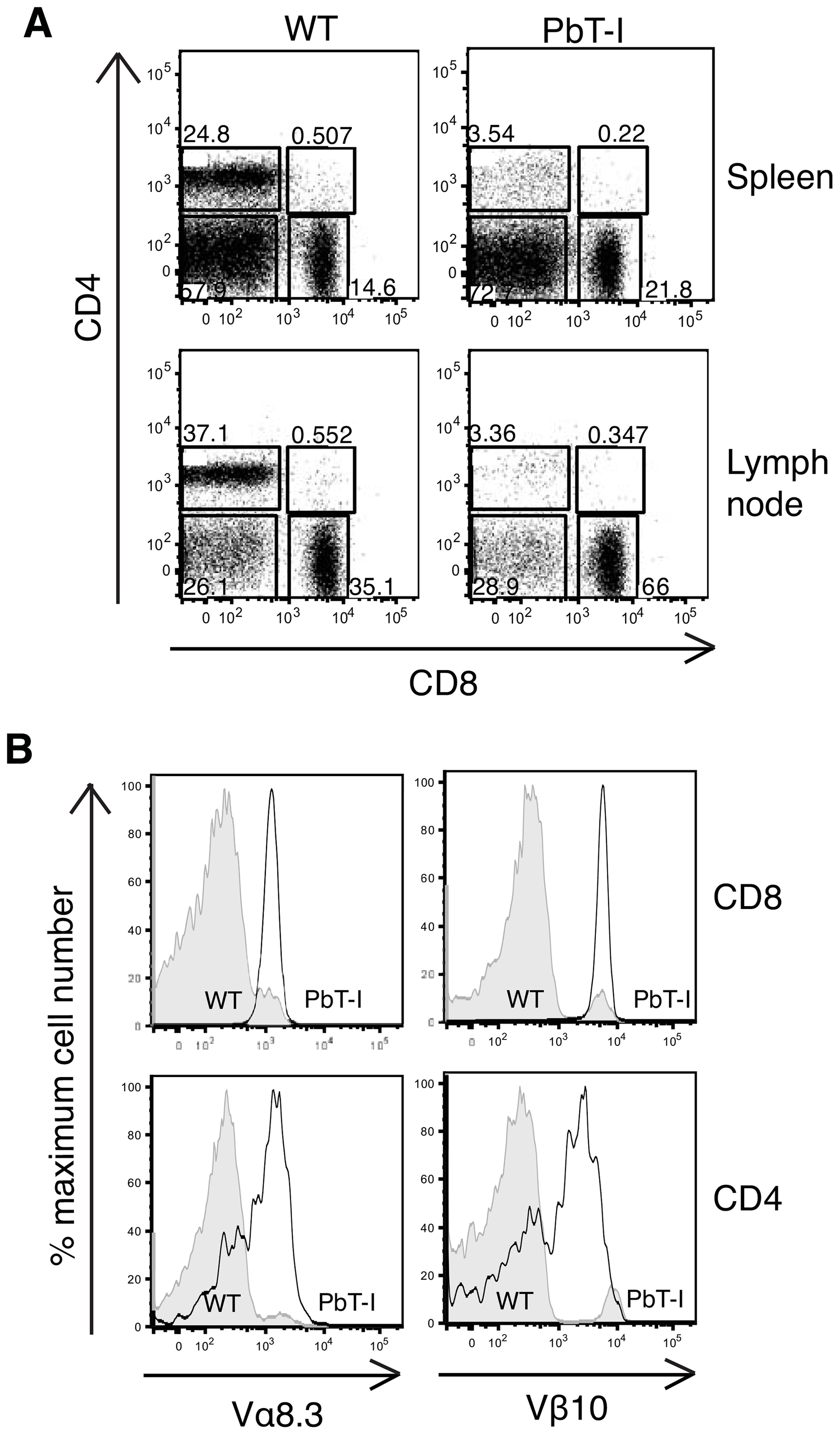 Characterization of T cells from the spleen and lymph node of PbT-I mice.