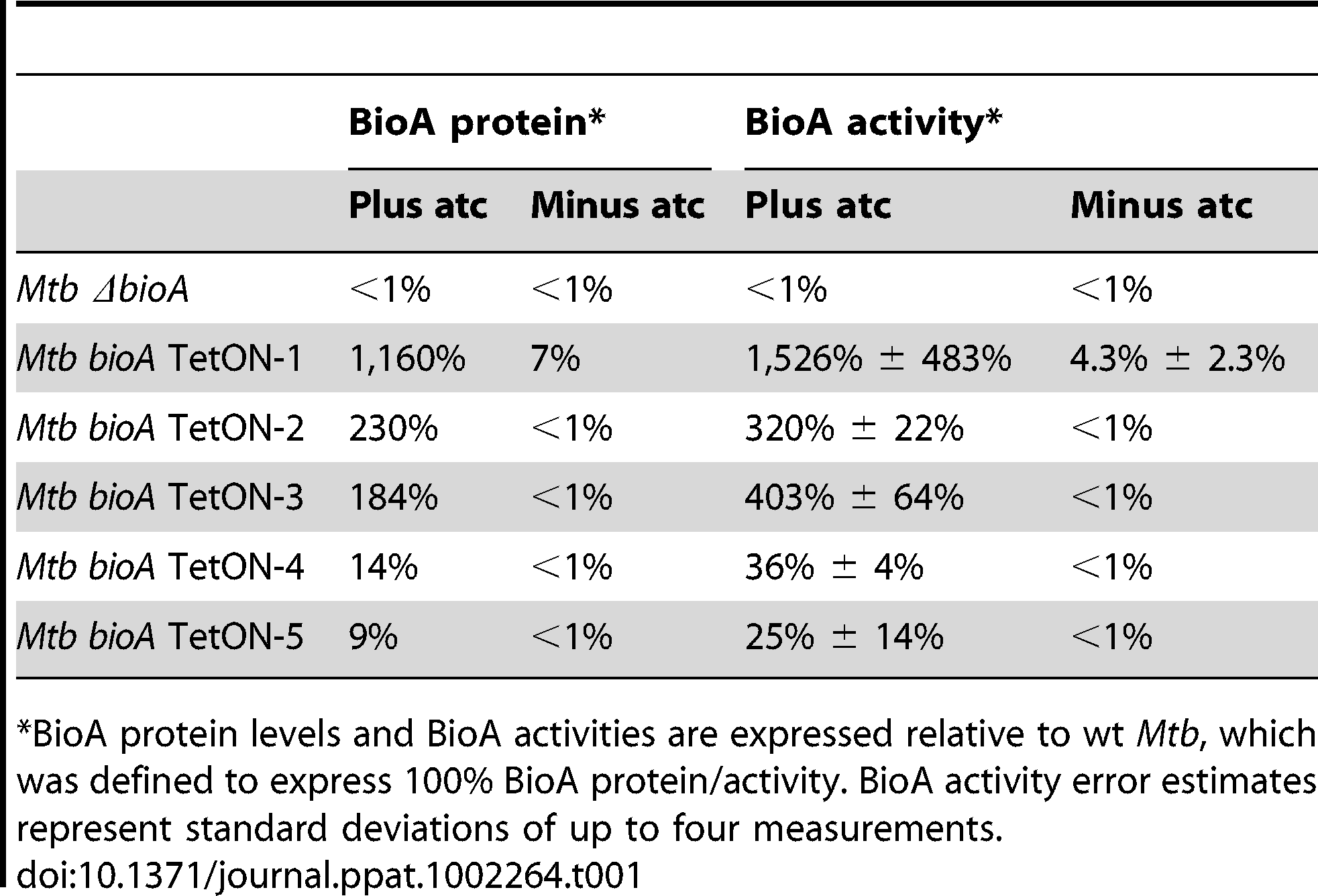 Relative BioA protein levels and activities.