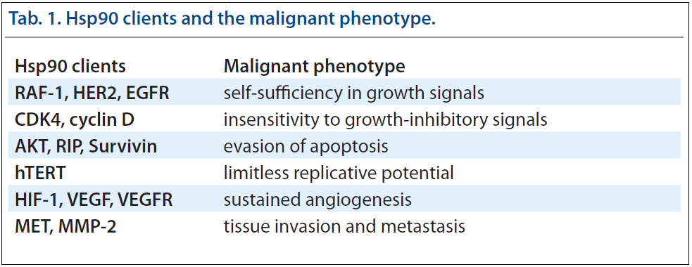 Hsp90 clients and the malignant phenotype.