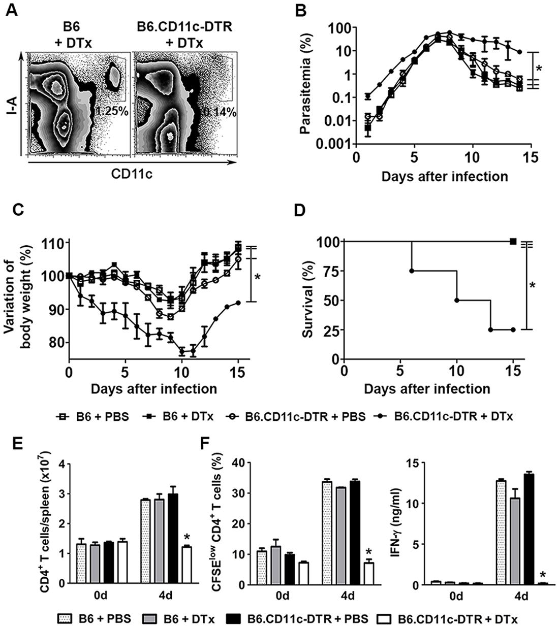 Effects of DC depletion on acute <i>Pc</i> malaria.