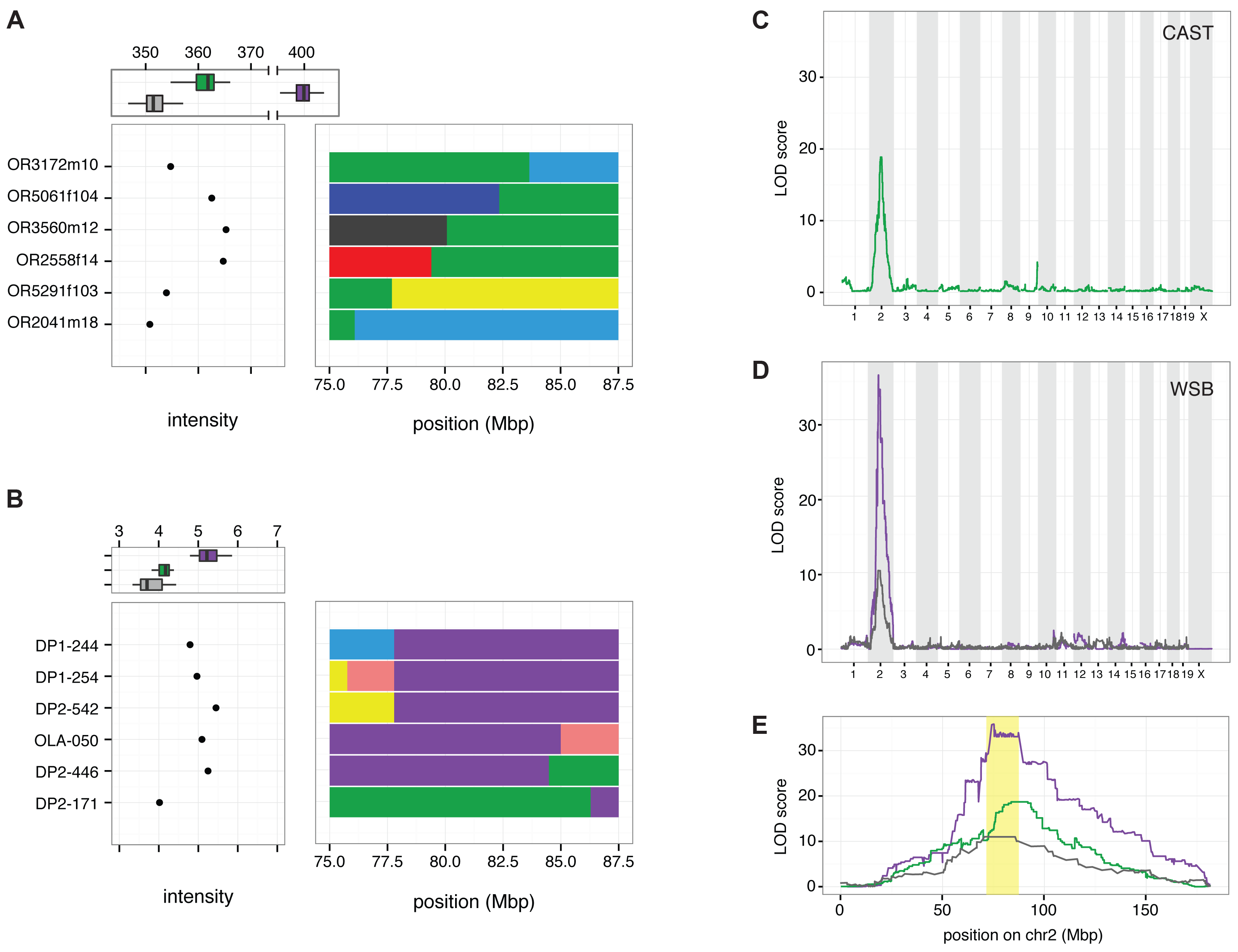 Linkage mapping localizes <i>R2d2</i> to a 900 kb region in Chr 2.