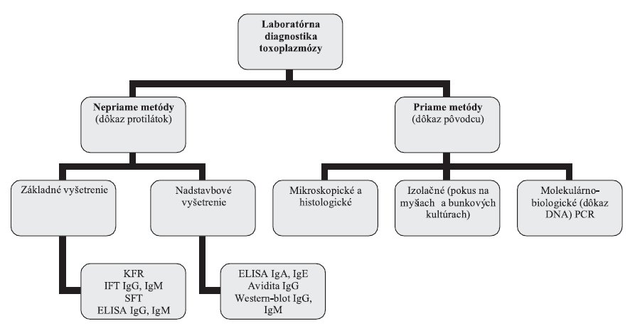 Laboratórna diagnostika toxoplazmózy – schéma vyšetrovacích postupov Fig. 1. Laboratory diagnosis of toxoplasmosis – scheme of test procedures
