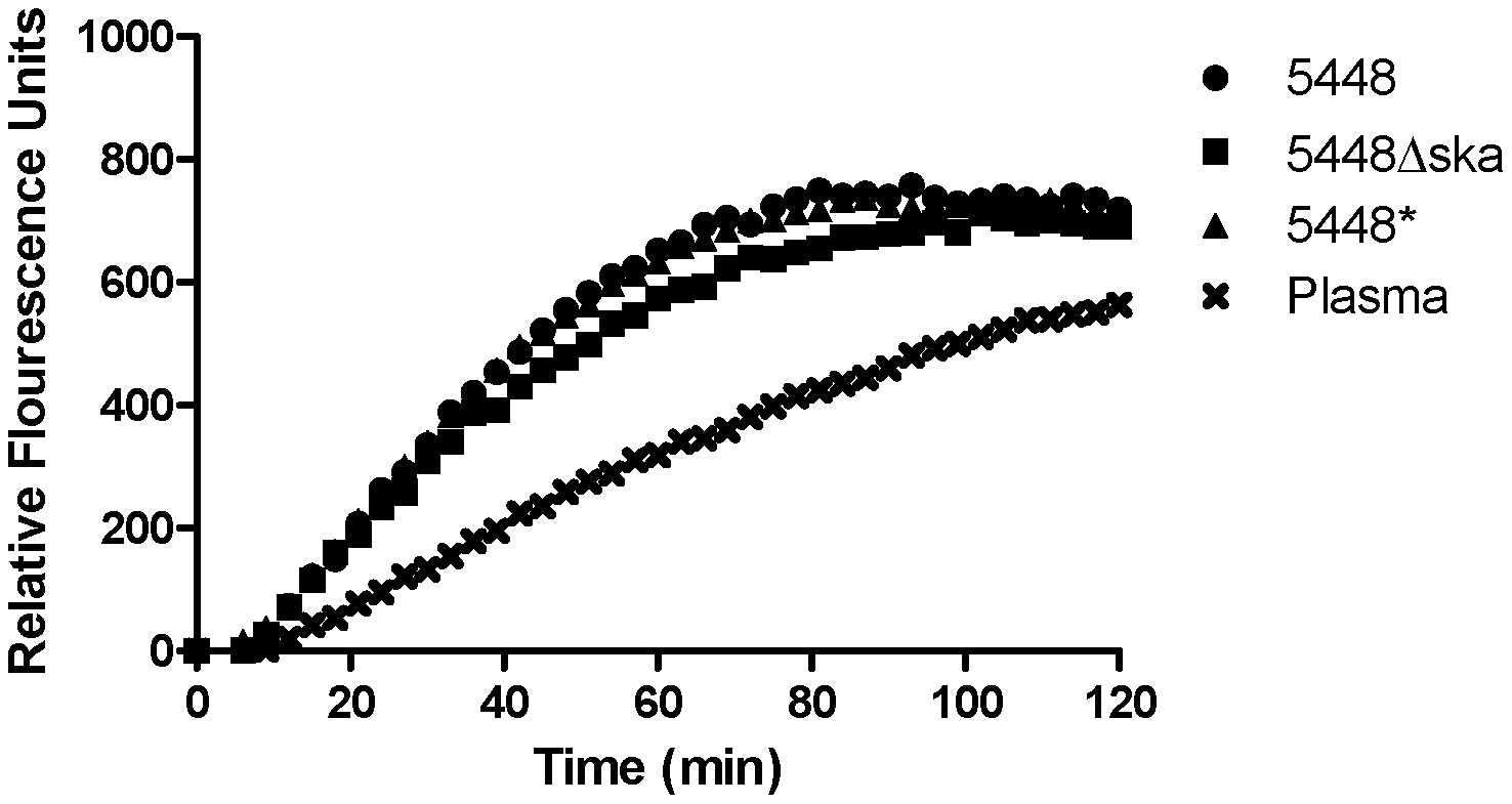 GAS facilitates enhanced uPA activity in plasma.