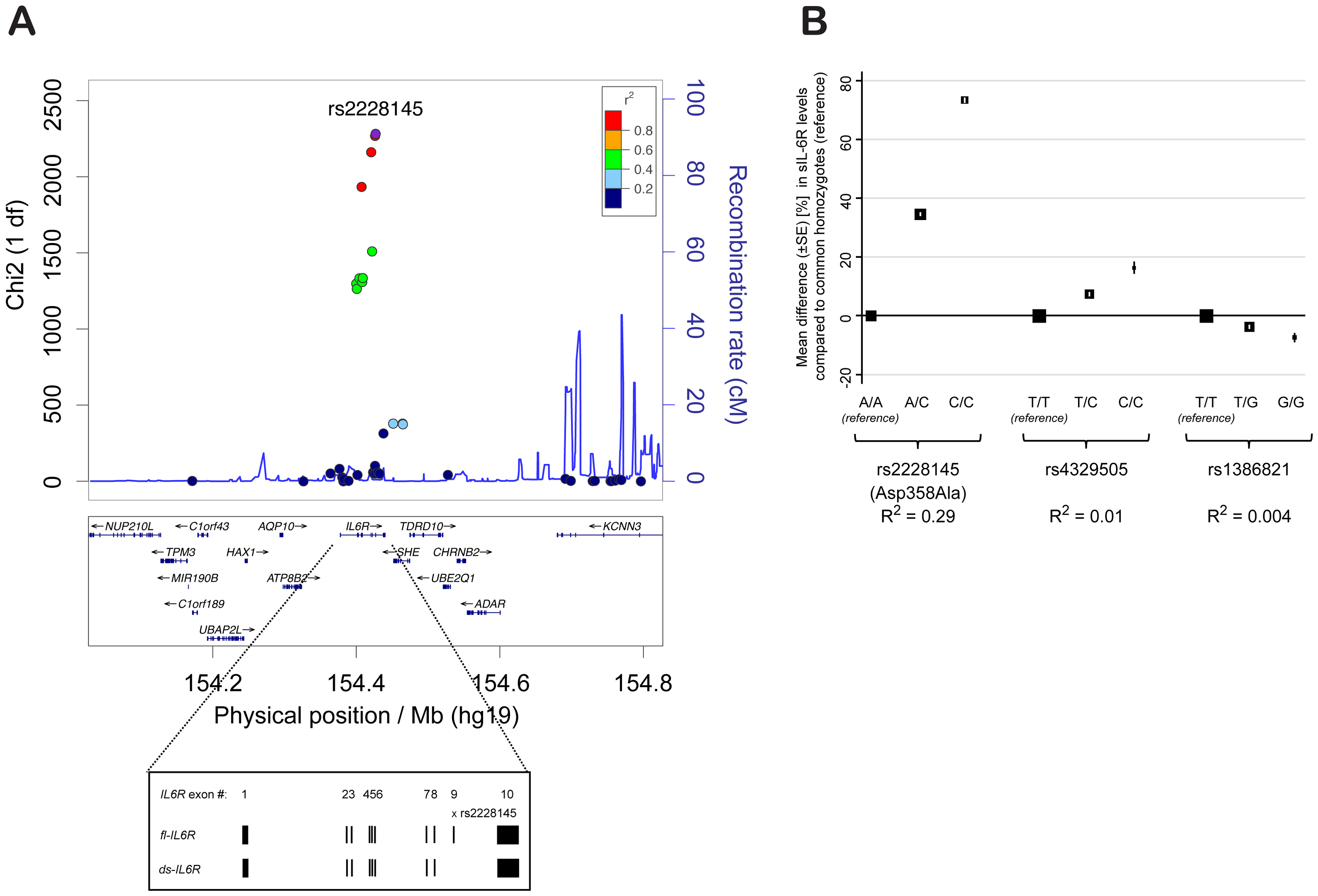 rs2228145 is the major determinant of circulating sIL-6R levels at the <i>IL6R</i> locus.