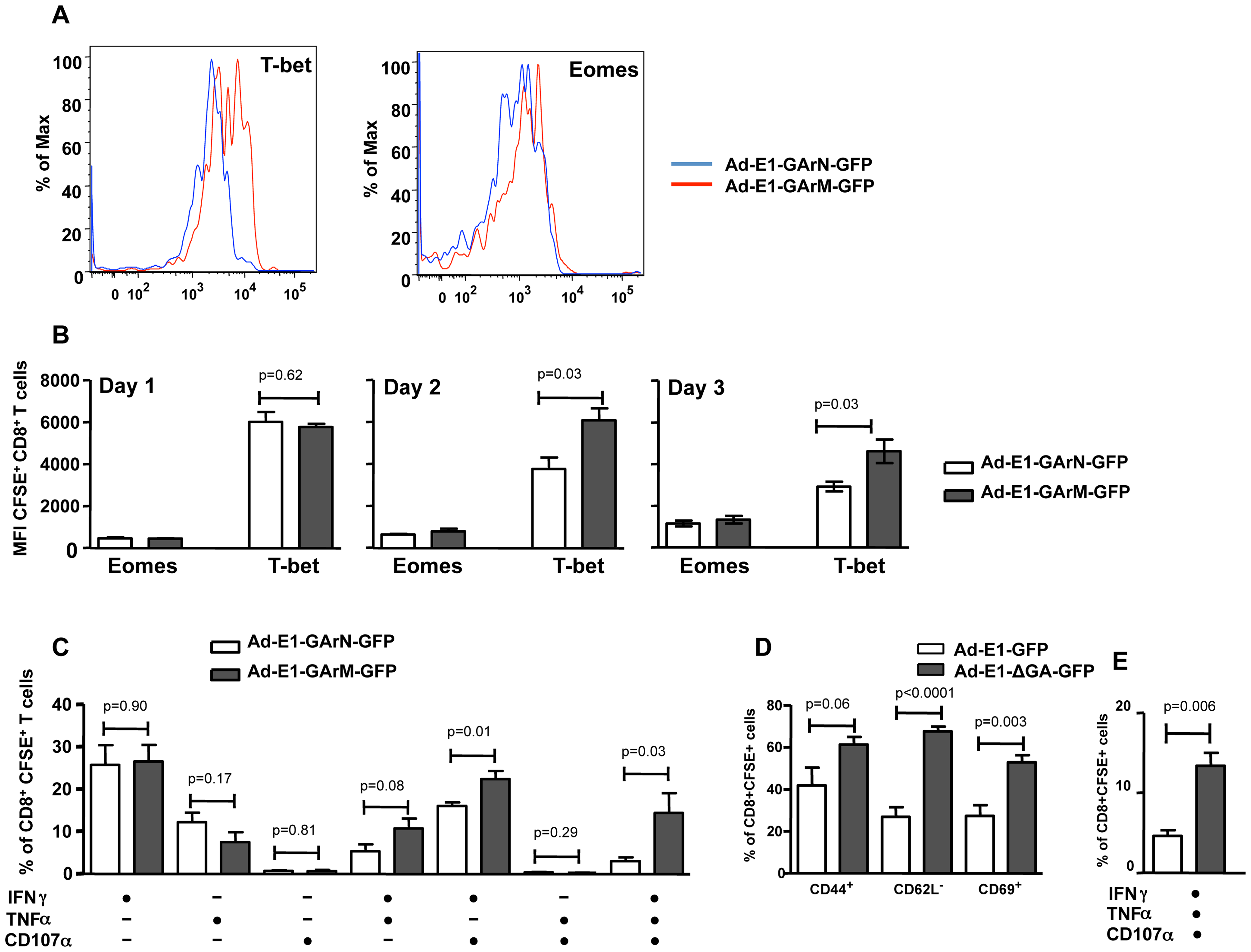 Differential translation of EBNA1 mRNAs impacts on the expression of transcriptional factors and antigen specific functions in Ag-specific T cells from DLNs.