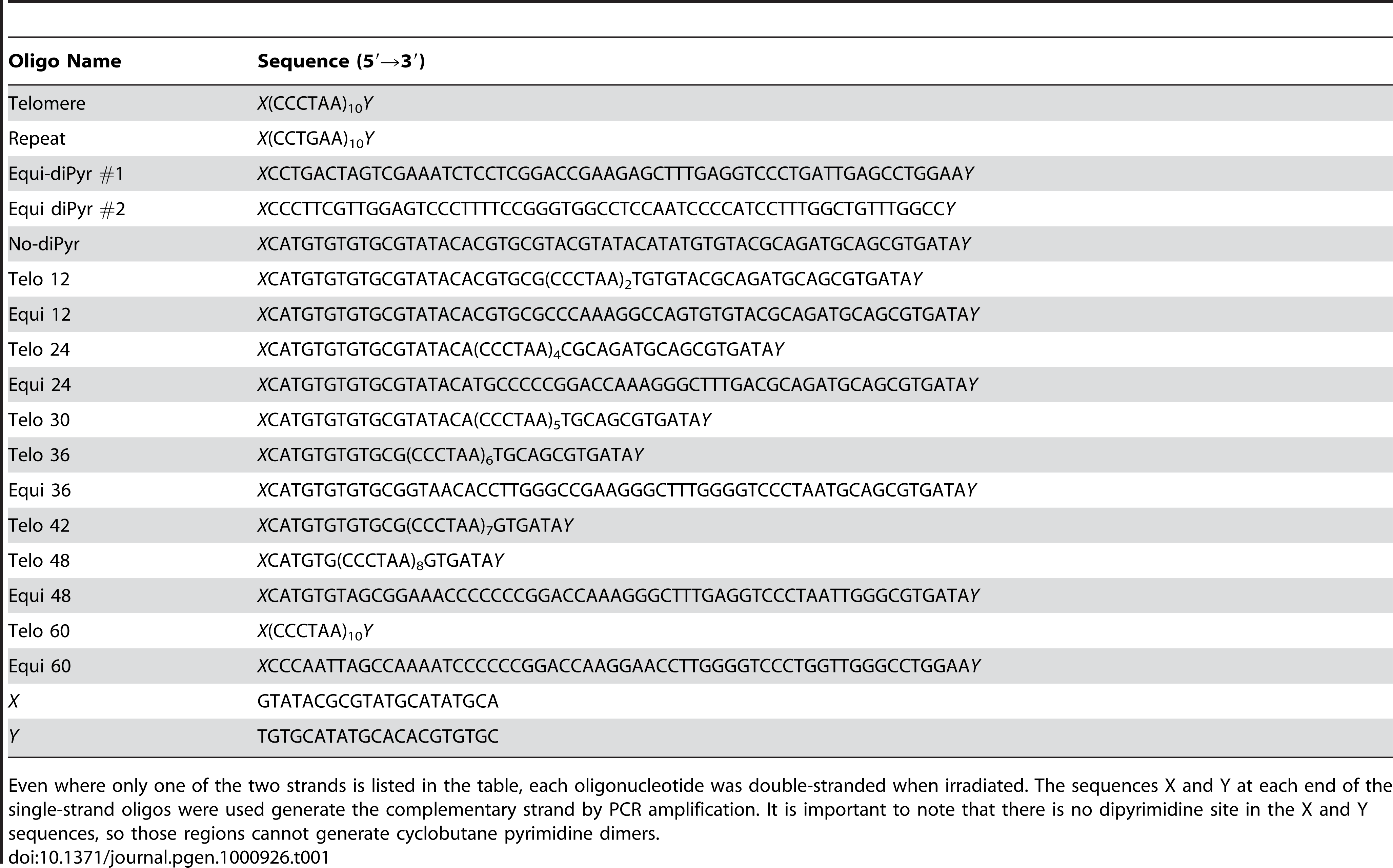 List of oligonucleotides used for the dot-blot experiment.