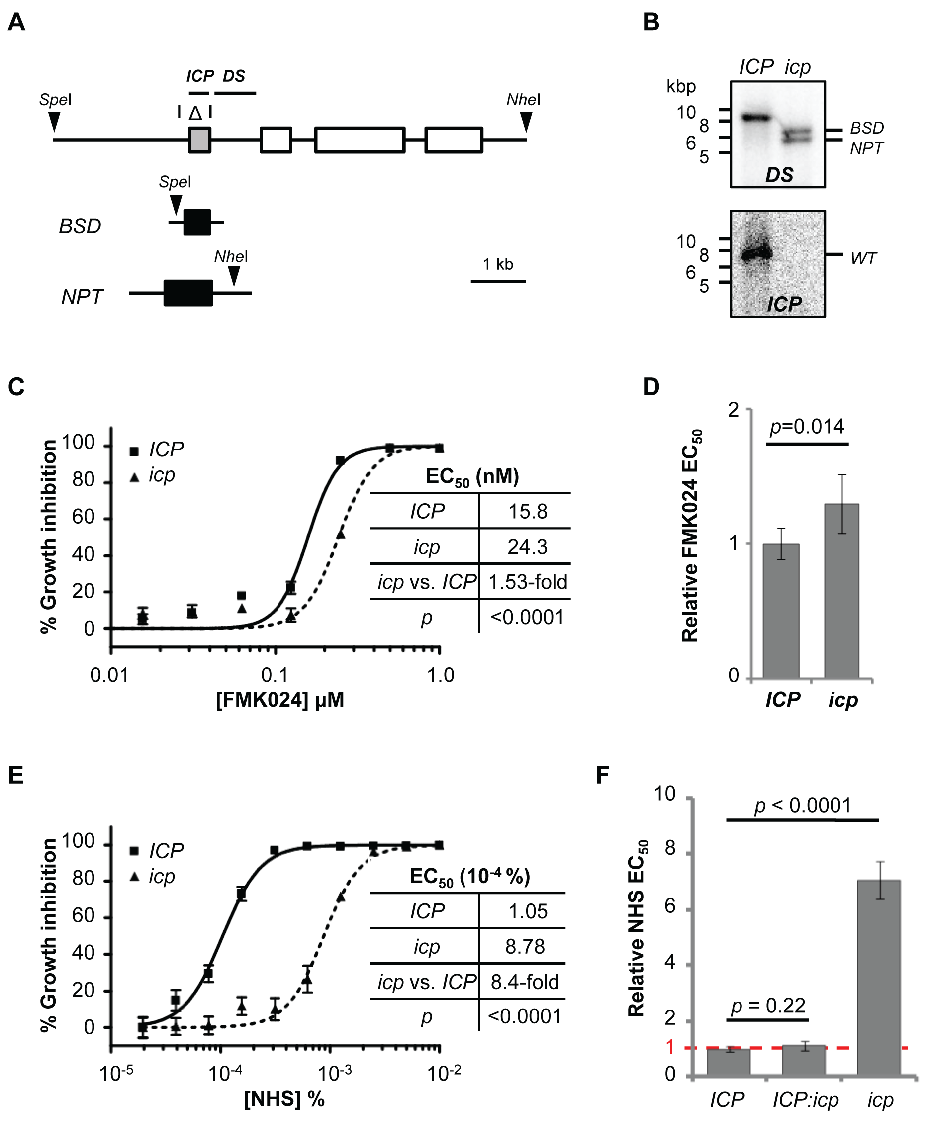 Disruption of <i>ICP</i> in <i>T. b. brucei</i> renders cells less sensitive to NHS.