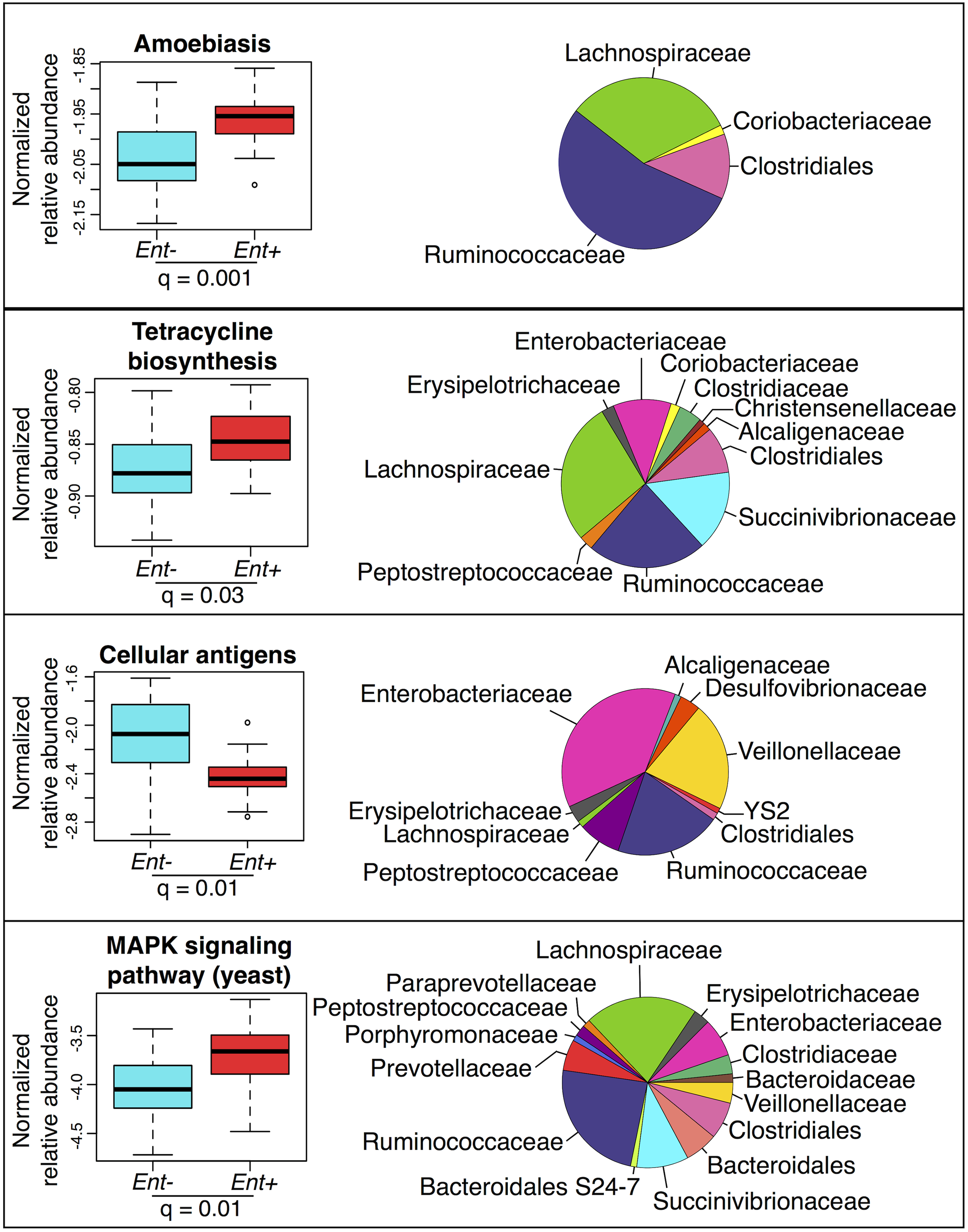 Normalized relative abundance of KEGG metabolic pathways significantly associated with <i>Entamoeba</i> status in an ANOVA (q < 0.05 using the most abundant; ≤ 0.4% in at least one group) (left panel) and the relative contributions of each taxon for each pathway (right panel).