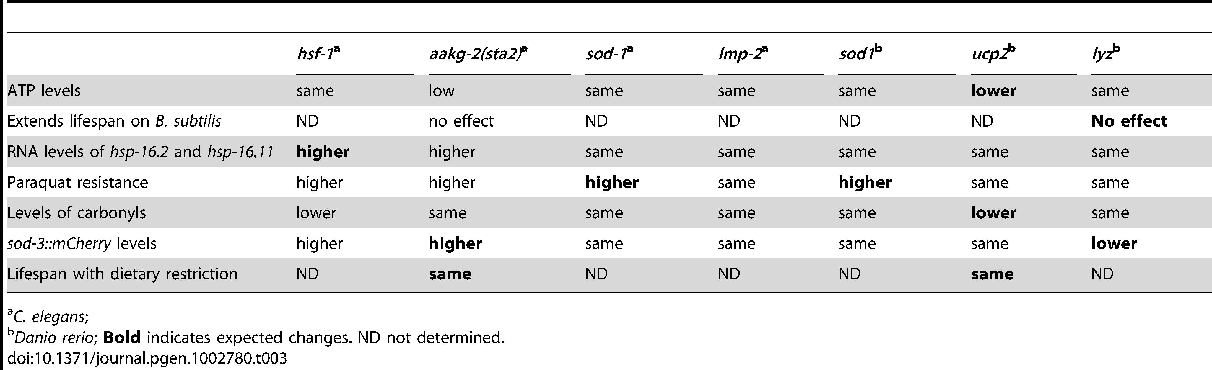 Summary of cell assays.