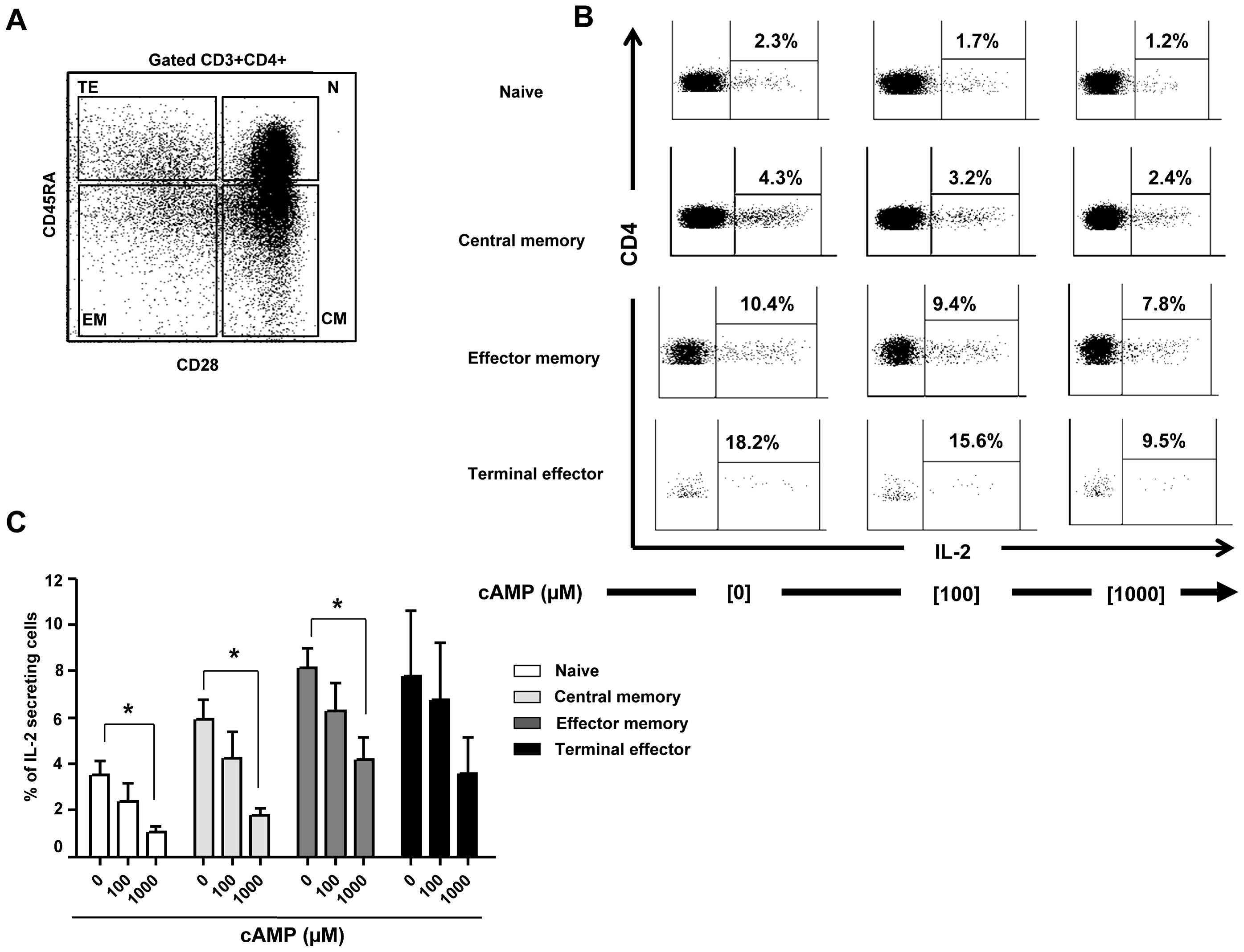 cAMP induced inhibition of IL-2 production by CD4+ T cell subsets.