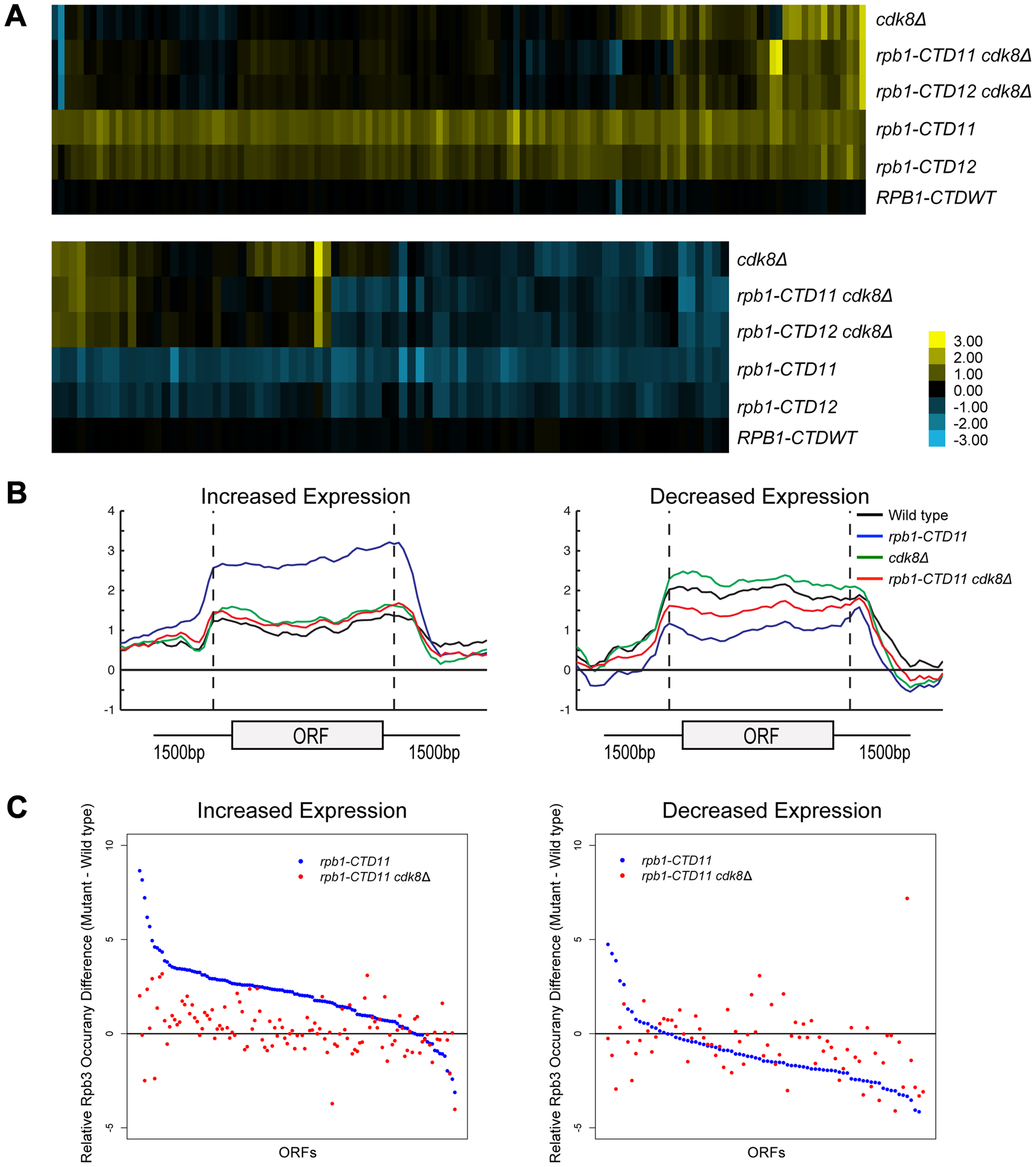 Loss of <i>CDK8</i> normalized <i>rbp1-CTD11</i> transcriptional defects by altering RNAPII recruitment.