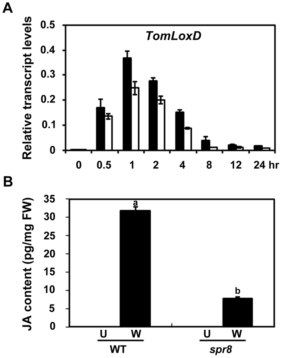 <i>spr8</i> impairs wound-induced JA biosynthesis.