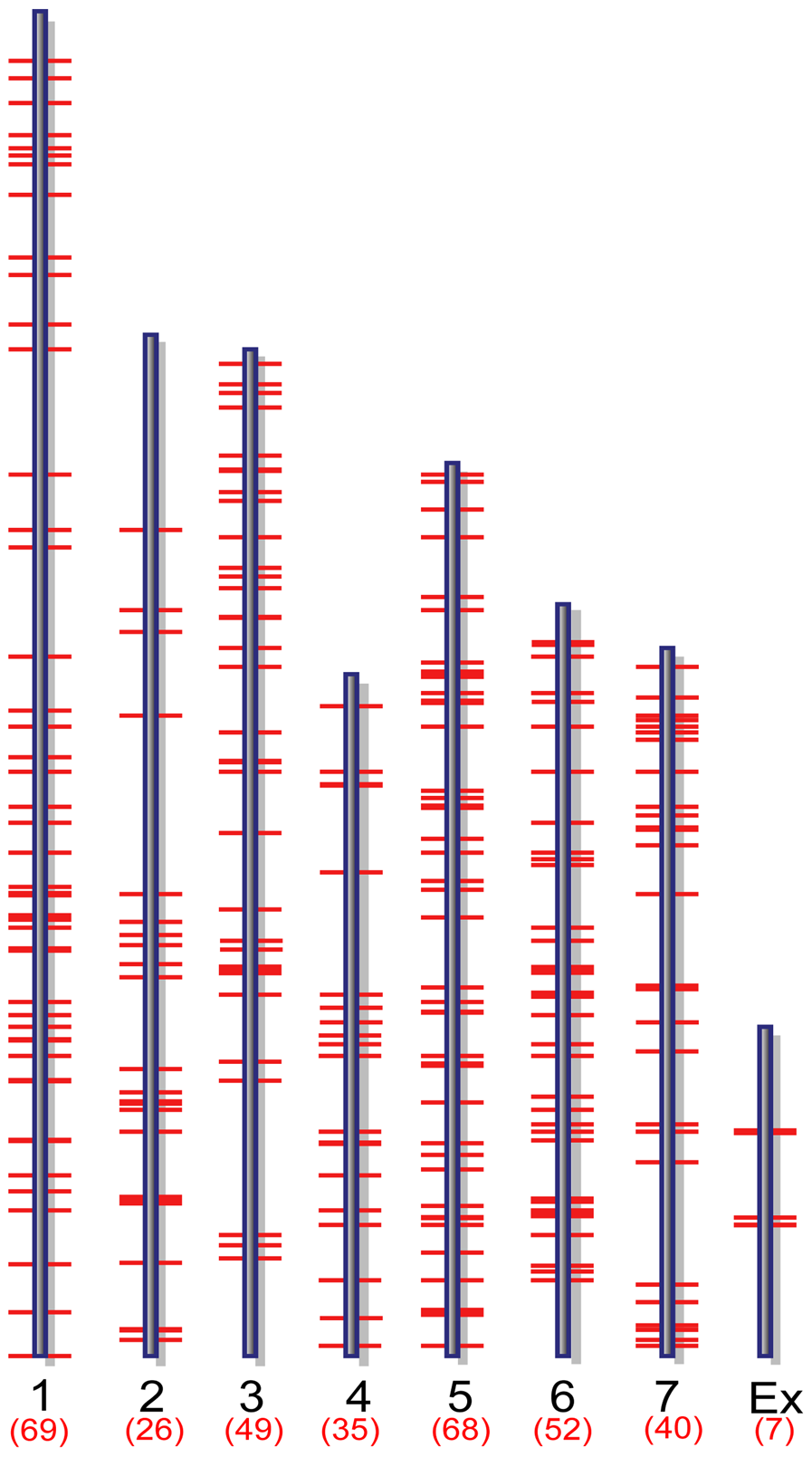 Genome-wide distribution of putative MoCRZ1 targets.