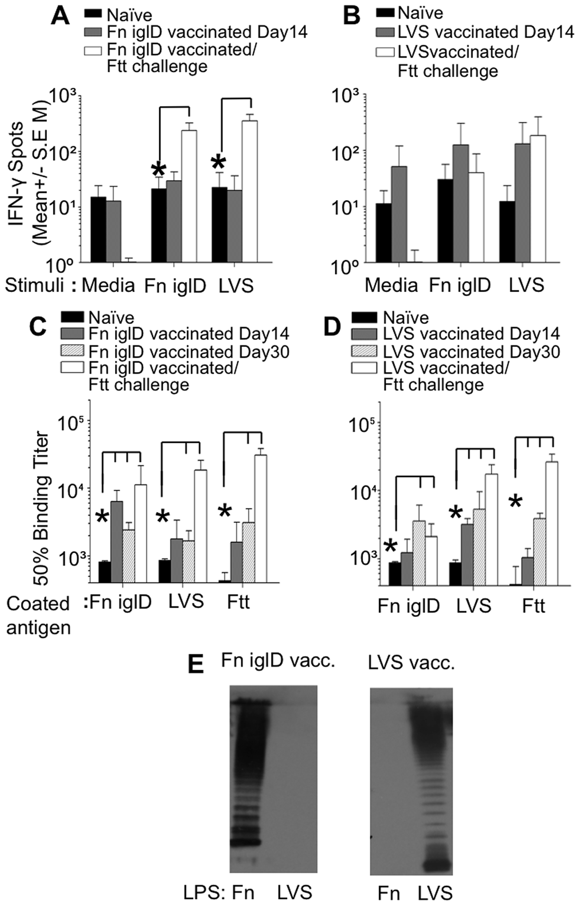 Cellular and humoral responses to <i>Francisella</i> spp. in vaccinated NHP.