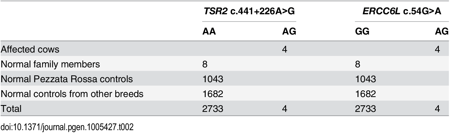 Association of the <i>TSR2</i> and <i>ERCC6L</i> variants with the streaked hairlessness phenotype.