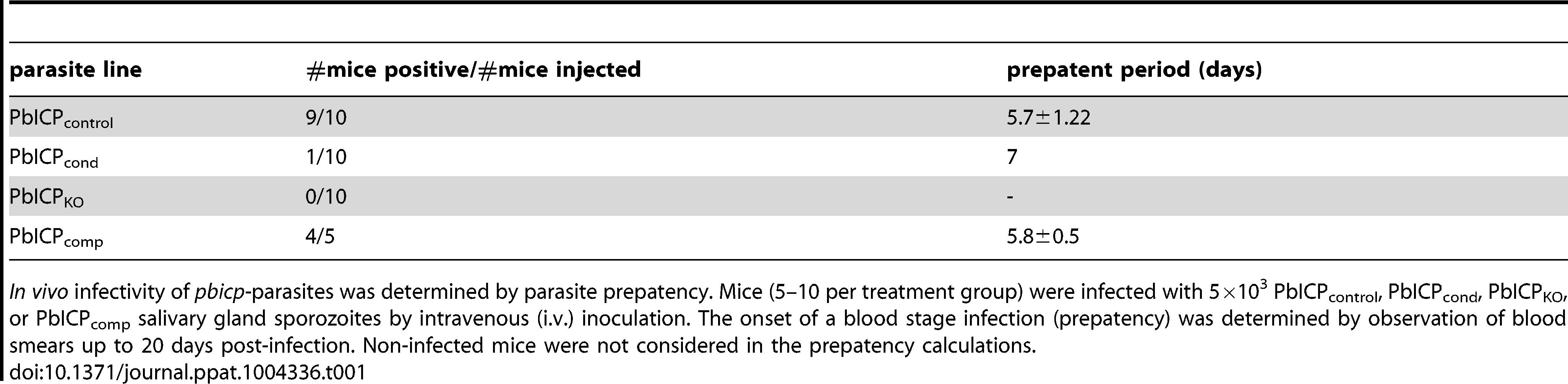 PbICP is essential for parasite development <i>in vivo</i>.