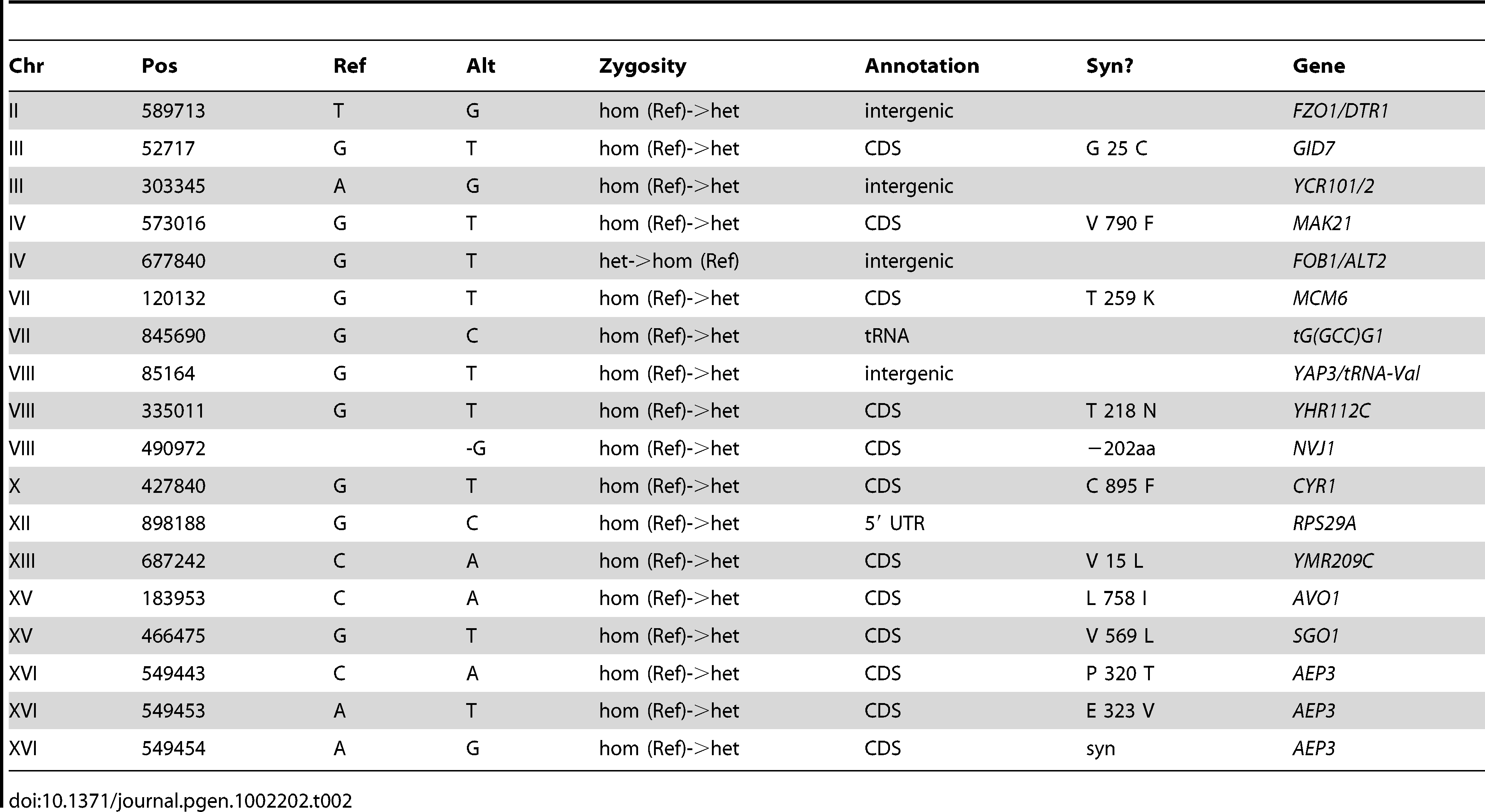 Summary of Substitutions and Indels for E2 (250 generations).