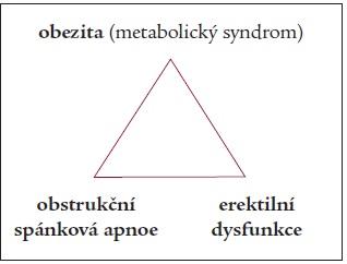 Obezita, obstrukční spánková apnoe a erektilní dysfunkce.