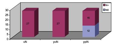 Klasifikace N souboru s klinickou perzistencí metastáz.