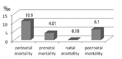 Figure 2. Perinatal mortality per 1000 live births for 2010 [1]