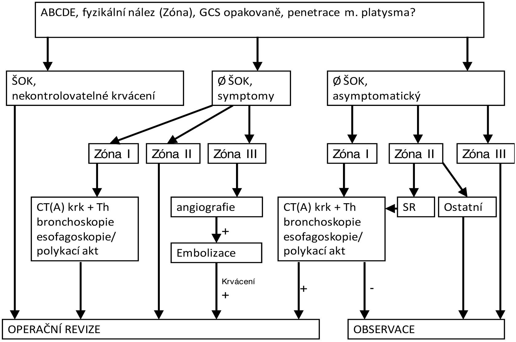 Diagnosticko-terapeutický algoritmus penetrujících poranění krku