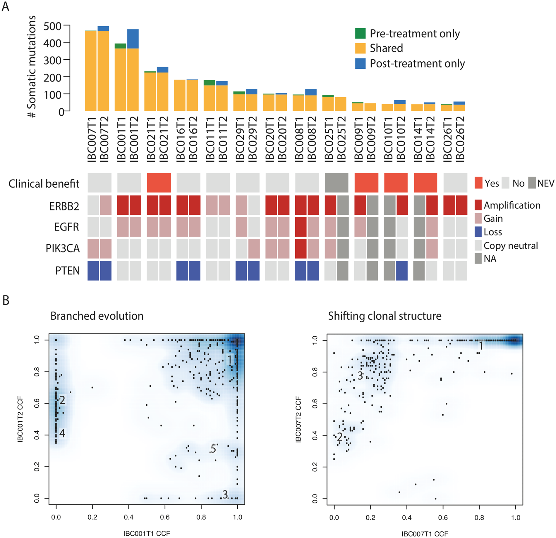 Genomic analysis of tumour biopsies before treatment and following disease progression on afatinib monotherapy.
