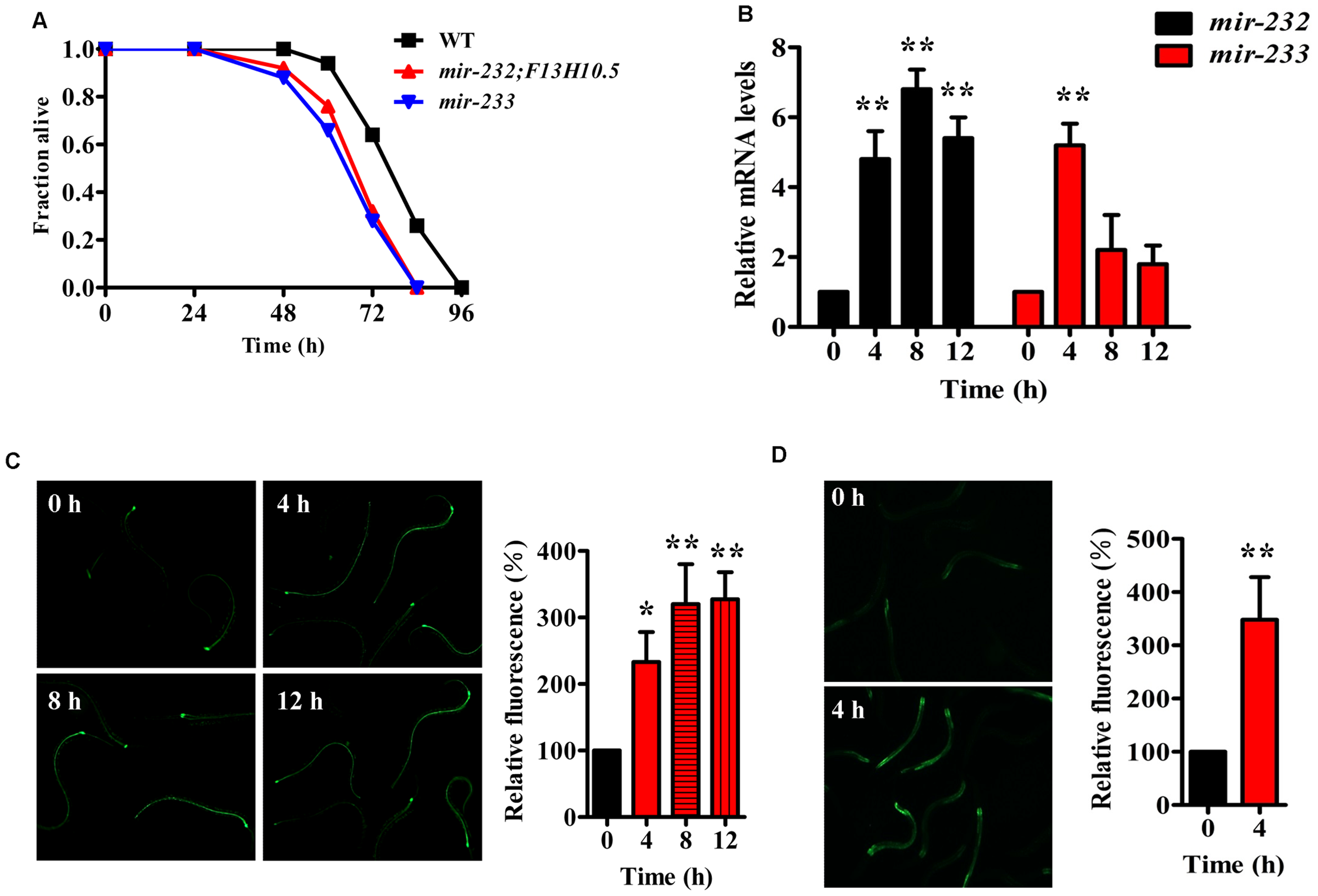 <i>P. aeruginosa</i> infection up-regulates the expression of <i>mir-232</i> and <i>mir-233</i>, which are required for innate immunity.