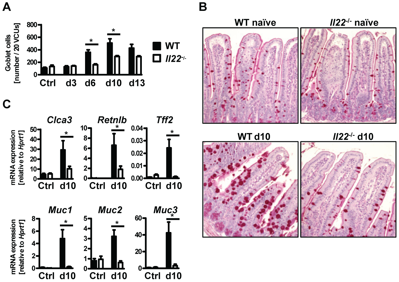 <i>Il22</i><sup>−/−</sup> mice have defective goblet cell responses.
