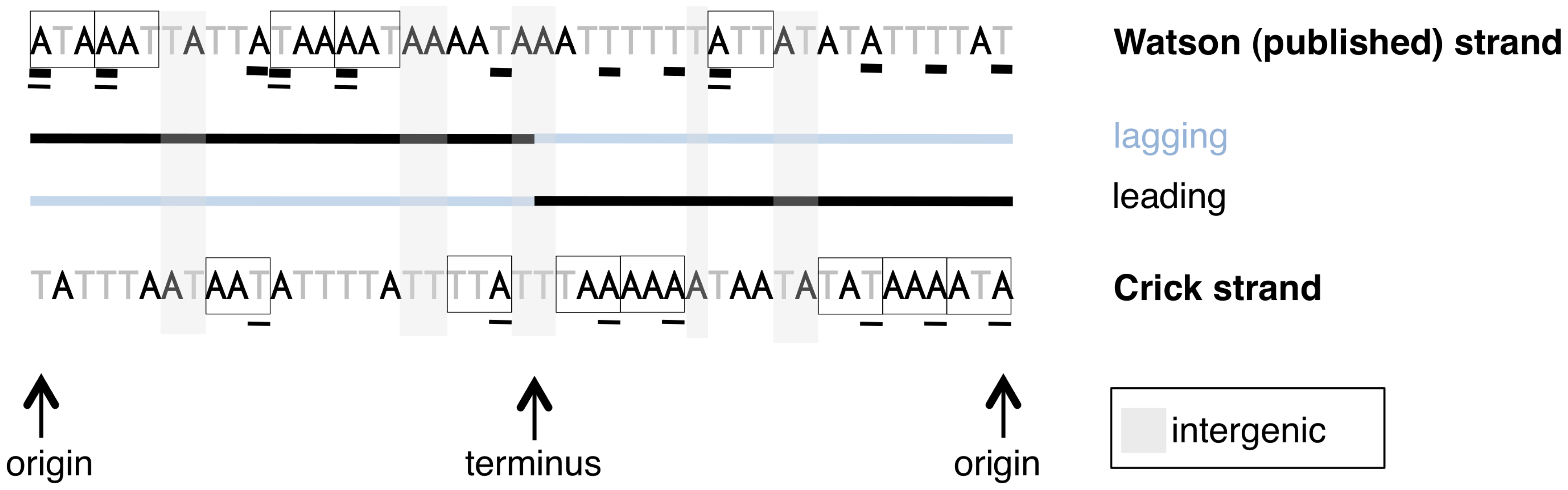 A schematic of sites used for different types of analyses in this paper.