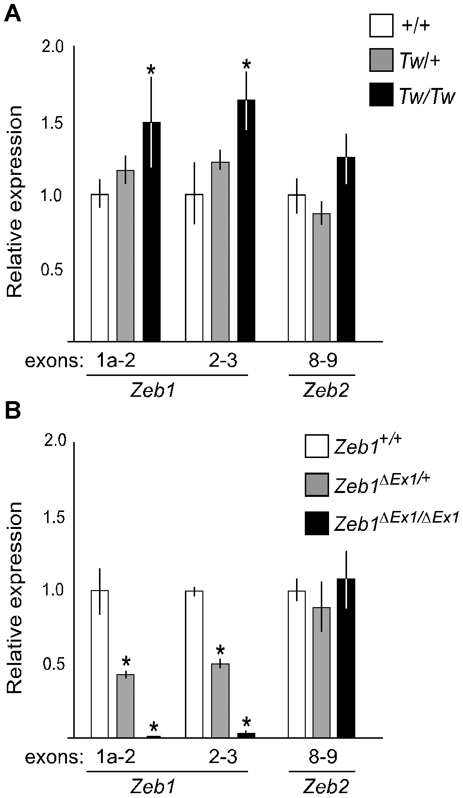 Comparative RT-PCR analysis of <i>Tw</i> and <i>Zeb1<sup>ΔEx1</sup></i> RNA from E13.5 ears.