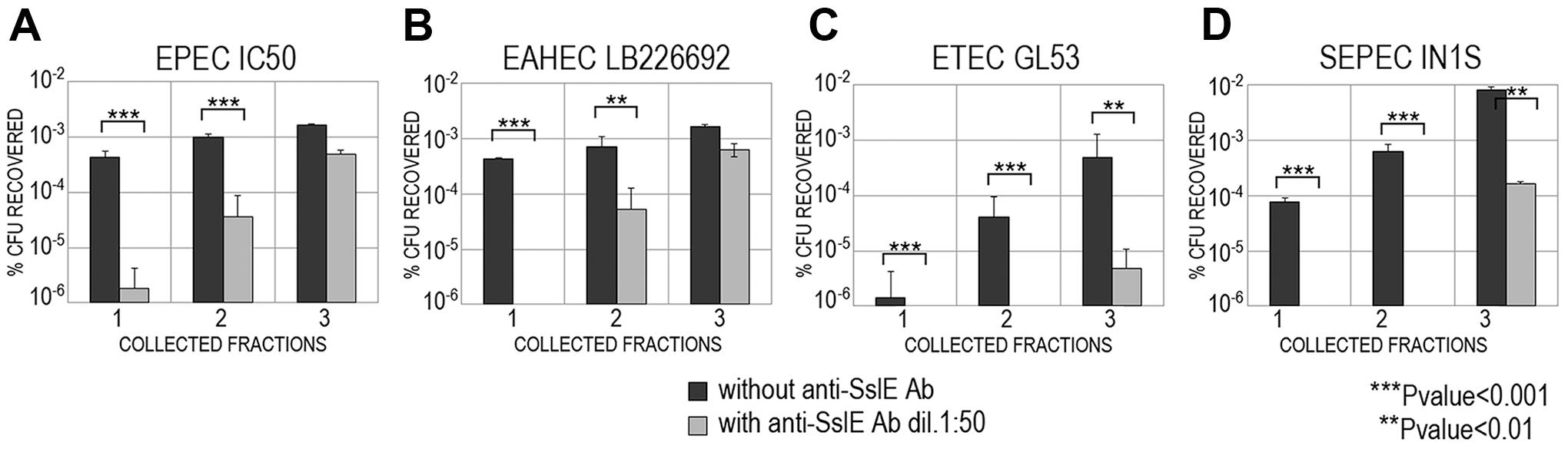 Cross-inhibition of <i>E. coli</i> translocation through a mucin-gel matrix by anti-SslE<sub>IHE3034</sub> (belonging to variant I) antibodies.