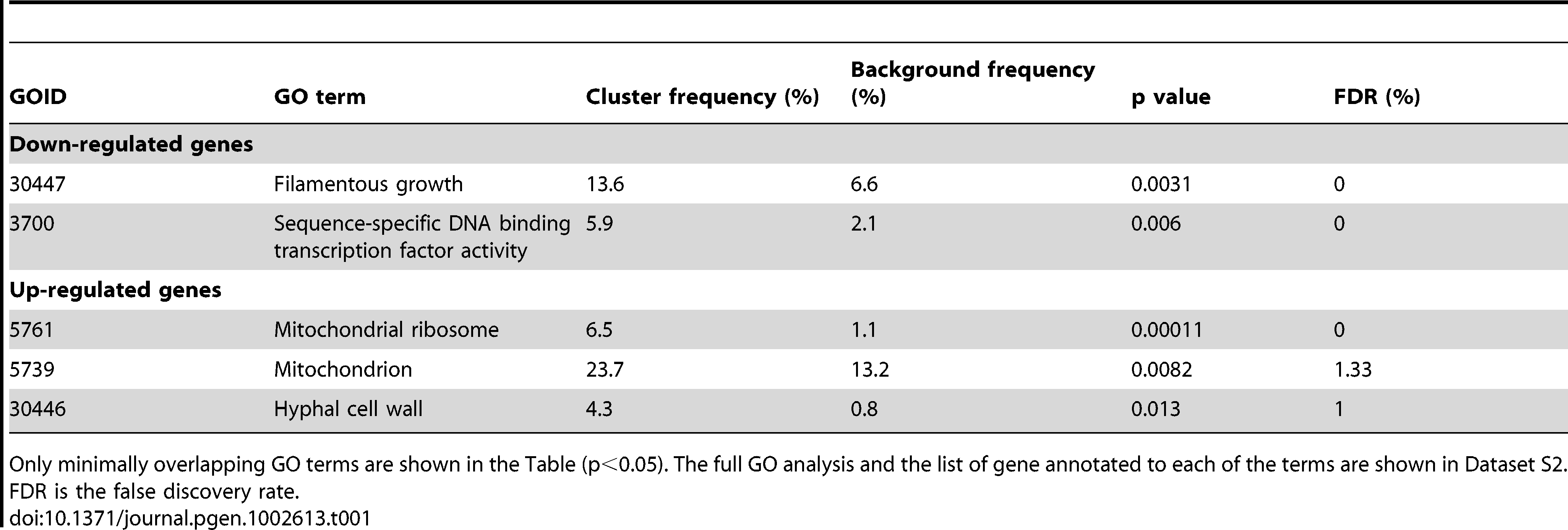 GO term analysis of genes differentially expressed in the <i>C. albicans med31ΔΔ</i> mutant.