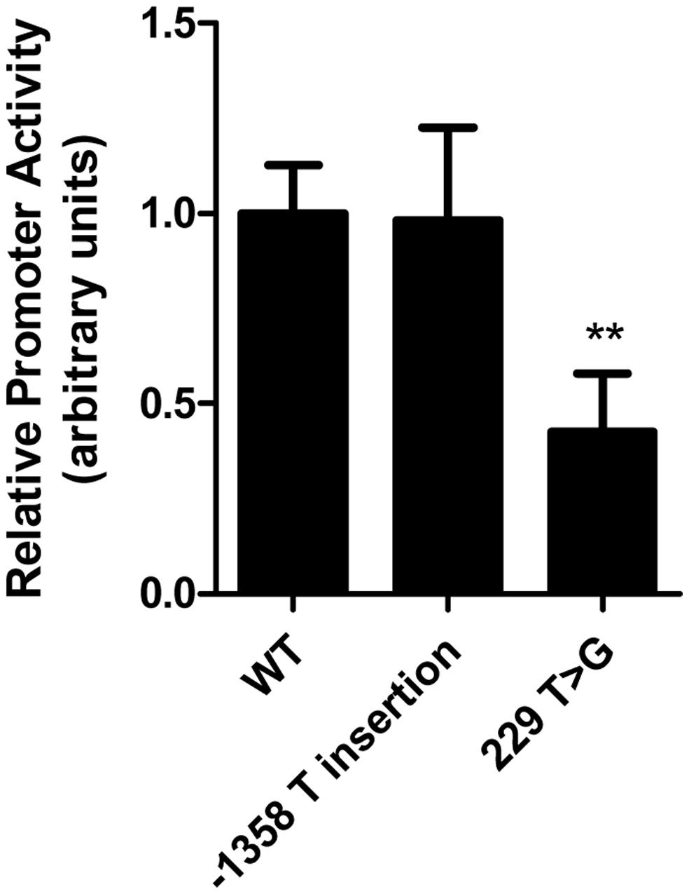 Common <i>LIPG</i> regulatory variant rs34474737 affects <i>LIPG</i> promoter activity <i>in vitro</i>.