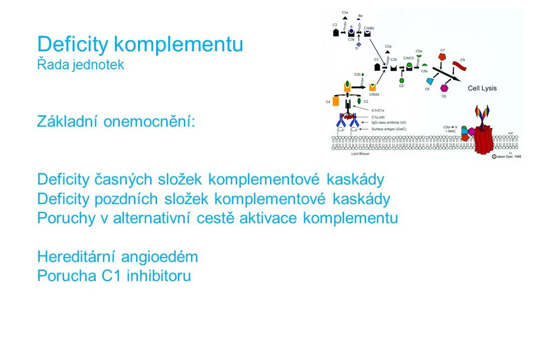 Imunodeficience - 22