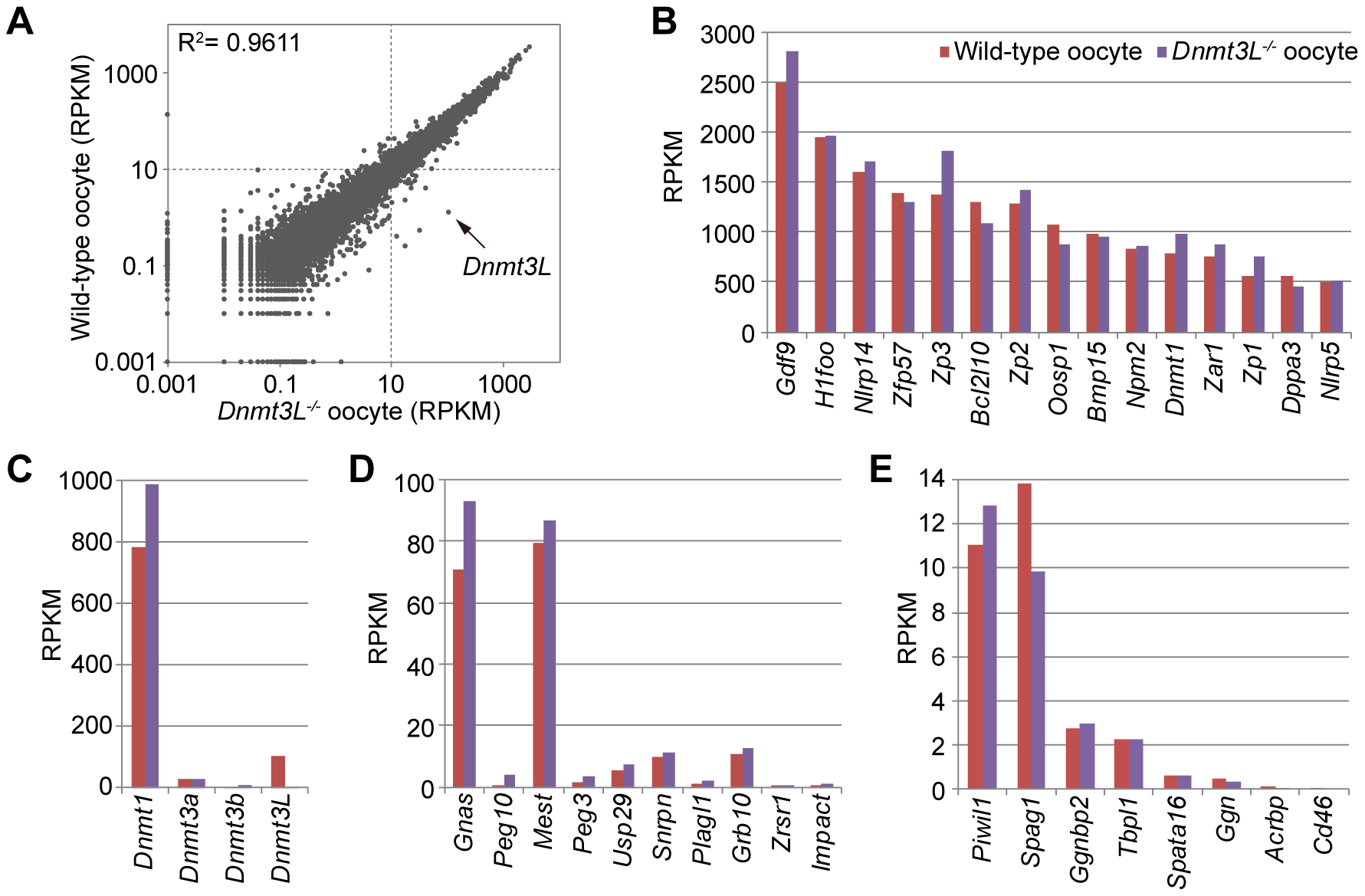 Comparison of gene expression profiles between wild-type and <i>Dnmt3L<sup>−/−</sup></i> oocytes.