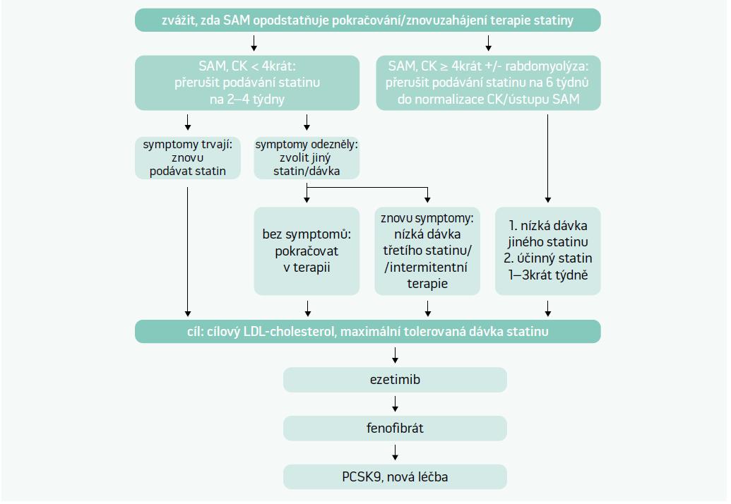 Schéma. Management pacientů se SAM včetně hodnocení hladin CK. Upraveno podle [3]