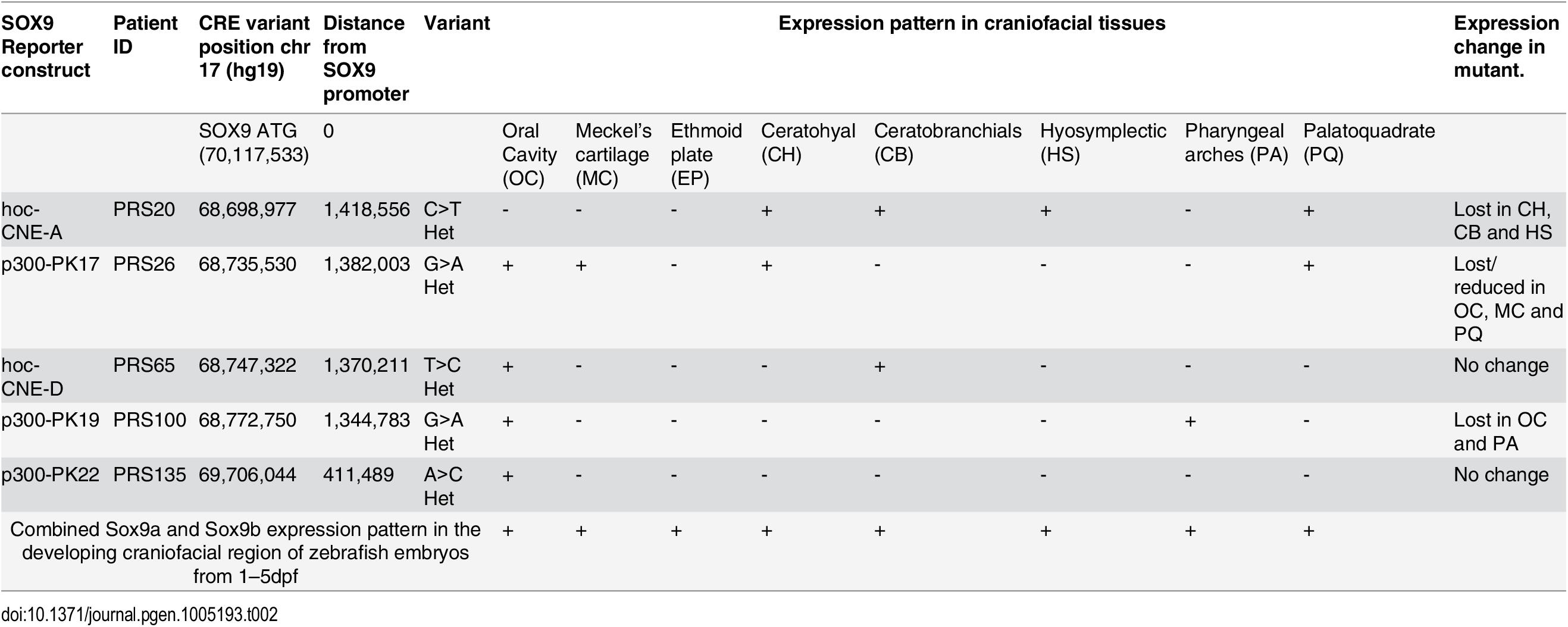 Novel PRS-associated elements tested for enhancer function.