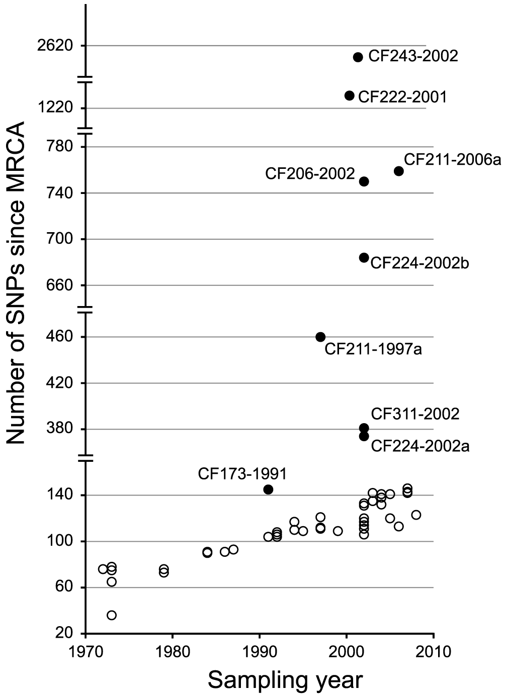 Total number of SNPs accumulated in each DK2 isolate.