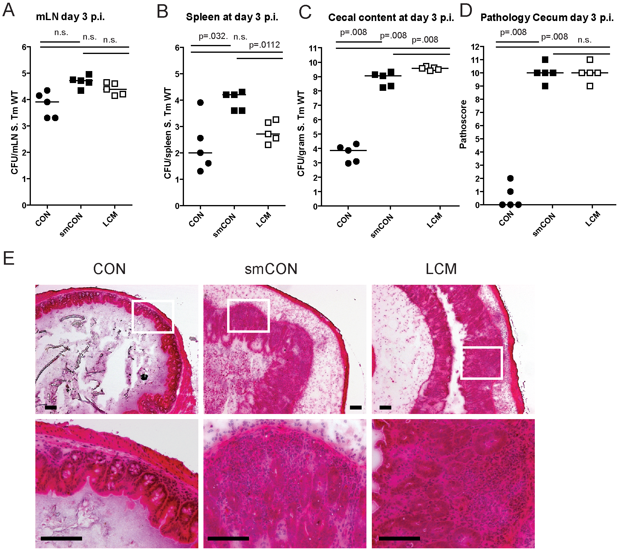 LCM mice susceptible to <i>S</i>. Typhimurium induced colitis.